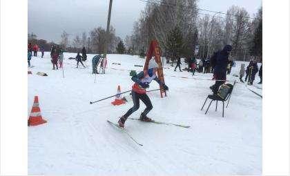 Областные соревнования по лыжным гонкам 8 марта прошли в Бердске