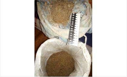 Искитимцев задержали за незаконный оборот наркотиков