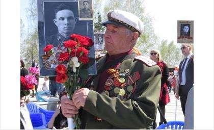 Ветеранам в Бердске выдадут витаминные наборы в период COVID-19