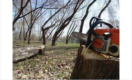 Идет реконструкция парка в Бердске