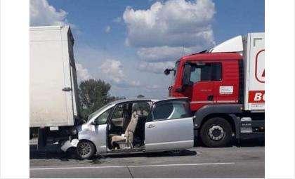 В столкновении с грузовиками под Коченево травмированы 2-месячный ребенок и двое взрослых