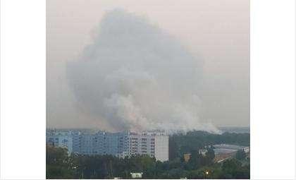 Дым от свалки дошёл до Бердска и Советского района