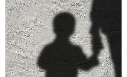СКР расследует факт нападения на ребёнка
