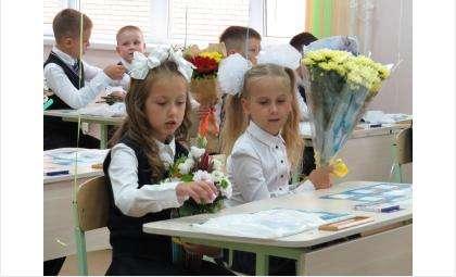 Ради выборов 11 и 12 сентября отменят занятия в школах Бердска