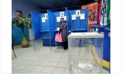 Идут выборы в ЗС НСО