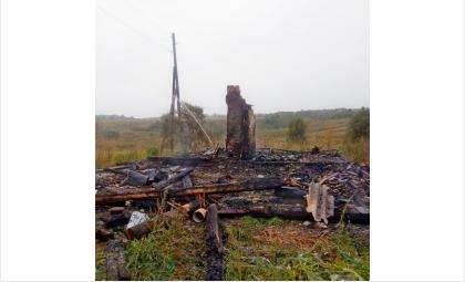 От сгоревшего дома осталась только труба