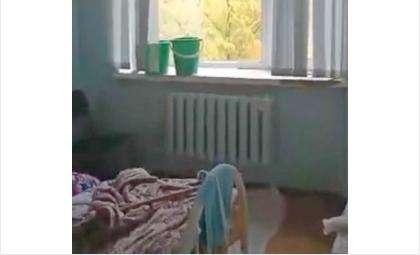 Сняли жуткий потоп на видео пациенты кардиологии Бердска во время дождя