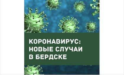 До 344 выросло число заболевших COVID-19 в Бердске