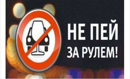 Операция «Нетрезвый водитель» пройдет с 24 по 27 октября в Бердске, Искитиме, Новосибирске