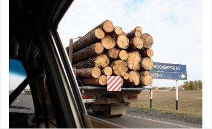 В лесопромышленном комплексе области действуют более 300 организаций