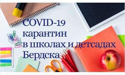5 школьников, 8 детсадовцев и 25 взрослых сотрудников школ и садов больны COVID-19 в Бердске