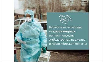 Бесплатные лекарства от COVID-19 выдают на дому заболевшим в Новосибирской области