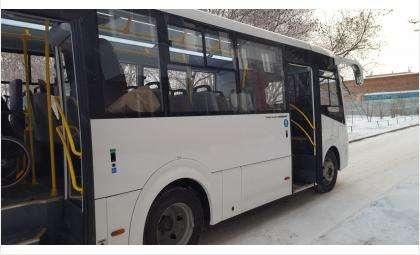 Бесплатный проезд для школьников на Новогодних каникулах утвердили в Бердске