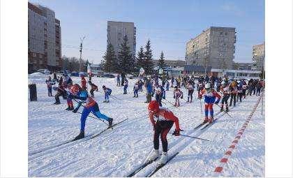 Контрольная тренировка по лыжным гонкам