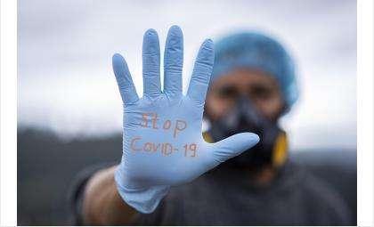 Сводка по COVID-19 на 20 января: плюс 5 больных за сутки в Бердске
