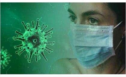 Население России еще не выработало иммунитет к COVID-19
