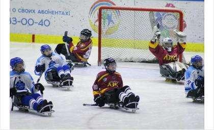 Следж-хоккеисты