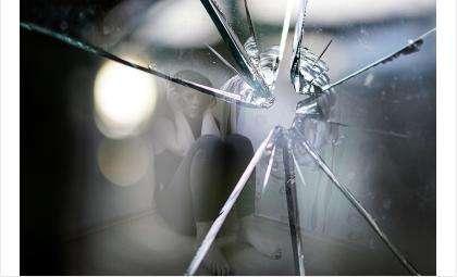 65 женщин совершили преступления в Бердске в 2020 году