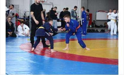 Три «золота» привезла команда школы №1 Бердска с турнира по джиу-джитсу Warrior cup 2021