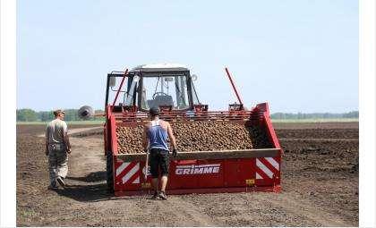 Упростить порядок получения спецразрешений для сельскохозтехники