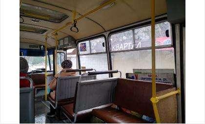 Автобус начал курсировать из Бердска в Агролес