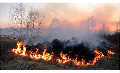 Пал травы - одна из основных причин весенних пожаров