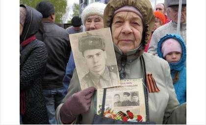 Нина Георгиевна Яковенко несла в колонне полка в 2016 году портреты родных братьев