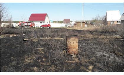 Огонь распространился на соседние участки