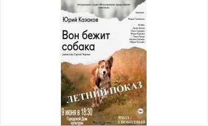 ГДК Бердска приглашает на спектакль «Вон бежит собака» Театральной студии «Исполнители»