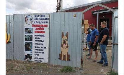"""Собаки находятся в приюте """"Надежда"""""""
