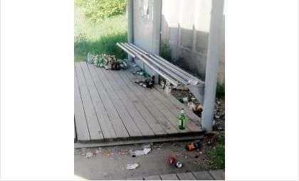 Заросла пивными бутылками остановка «Химзавод» в Бердске