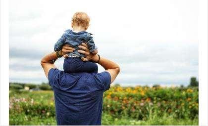 В Новосибирской области, как и в стране лидируют семьи с одним ребенком