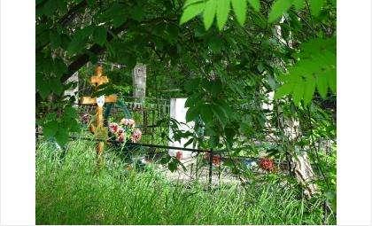 Перед Троицей принято навещать могилы родственников