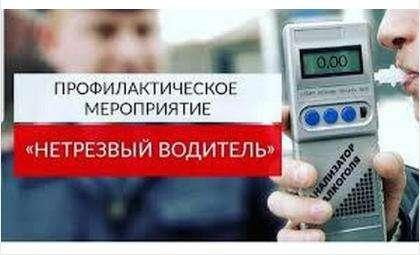 Рейд «Нетрезвый водитель» завершится 19 июля в Бердске