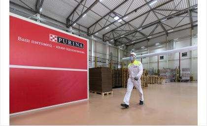 Nestlé Purina Petcare ведет набор сотрудников