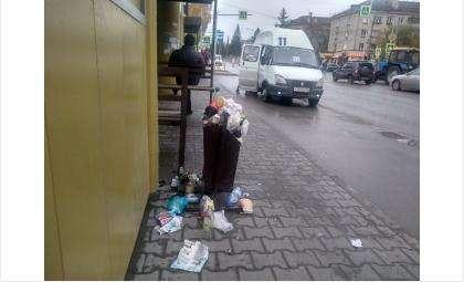 Переполненных контейнеров не должно быть на улицах города