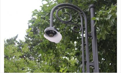 Хулиганы разбили фонари, разворотили лавочки и урны