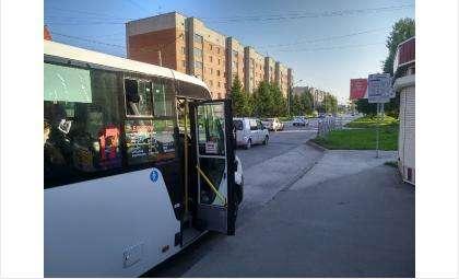 Общественный транспорт в Бердске онлайн отследить нельзя