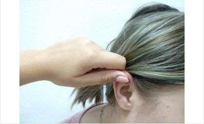 Если дернуть за ухо, можно причинить травму