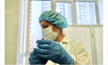 От COVID-19 и гриппа можно привиться на избирательных участках в школах Бердска