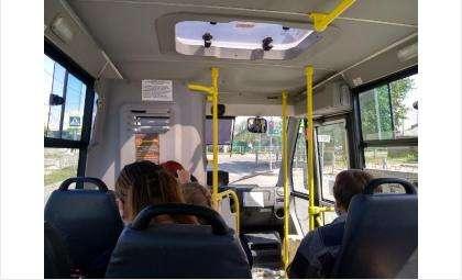 Вместо маршруток пустят автобусы