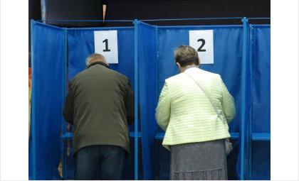 Проголосовали уже более 15 тысяч жителей Бердска