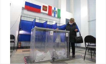 Бердчане голосуют