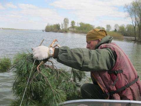 Акция «Подари жизнь рыбе!» прошла в Новосибирске