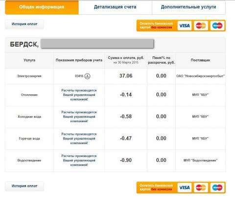 На сайте Новосибирскэнергосбыт с 1 апреля можно передать показания по воде и электричеству оплатить коммунальные услуги