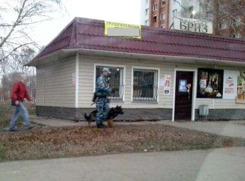 Идут следственно-оперативные действия - собака ищет преступников