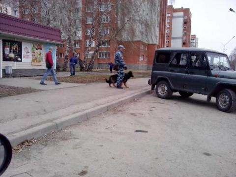 Вооруженное ограбление, совершенное в Бердске, раскрыто