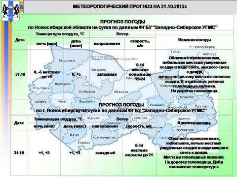 Инфографика ГУ МЧС по НСО