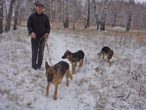 Борис Напольских, хозяин собак, искусавших трех человек за три месяца. Фото с личной странички Бориса Напольских в соцсетях
