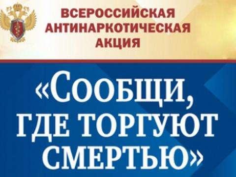 Сообщи, где торгуют смертью – в Бердске объявлена антинаркотическая акция